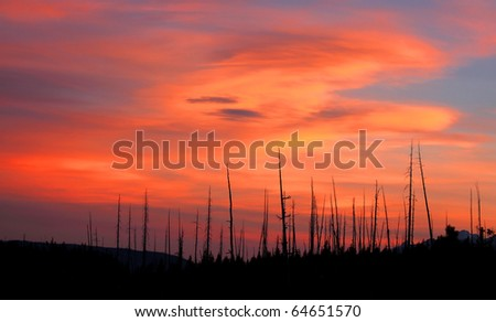 Sun set and bright red sky in yellow stone national park - stock photo