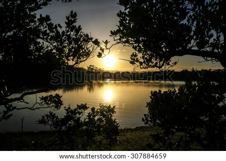 Sun setting over lake with mangrove trees silhouetted in foreground. Lake Narrawalle, New South Wales, Australia. - stock photo
