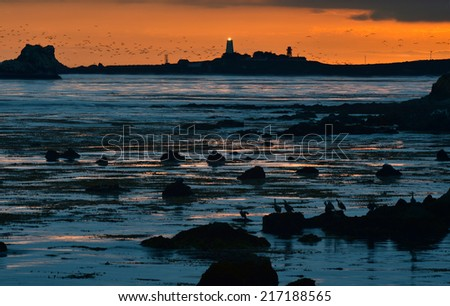 sun setting over Piedras Balncas lighthouse and the Big Sur rugged coastline as flock of seagulls heads down the coast, Piedras Blancas is famous for Hearst castle and for the Elephant seal colony. - stock photo