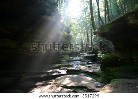 Sun shines through trees in rocky valley - stock photo