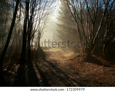 Sun shining through the trees with a childrens playground in the background - stock photo