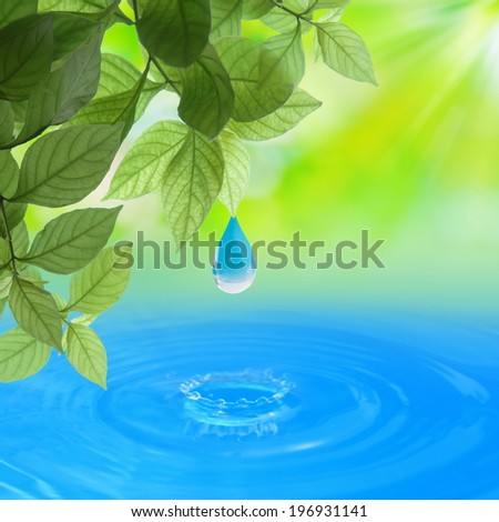 Sun Sunlight Shine to leaves with water drop over water Summer Spring background - stock photo