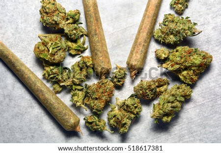 SUN VALLEY, CA - MAY 26, 2016: Marijuana buds and three marijuana cigarettes are displayed with strong shadows on a white paper towel at a marijuana dispensary in Sun Valley, CA on May 26, 2016.