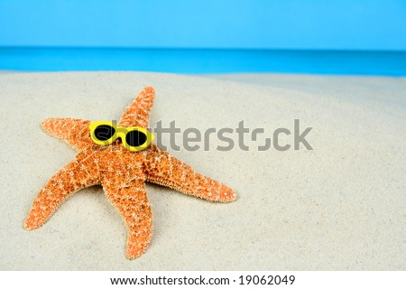 Sunbathing Starfish - stock photo