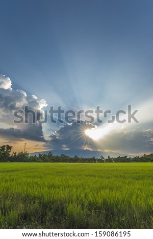sunbeam - stock photo