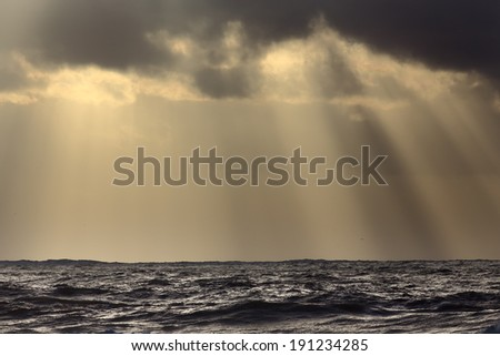 Sunbeams over sea at sunset - stock photo