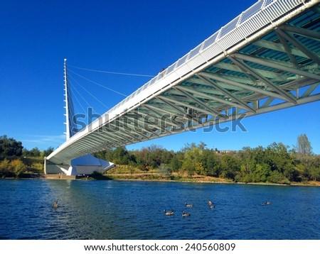 Sundial bridge over the Sacramento river  - stock photo