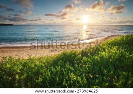 Sundown seascape composition. Sky, sea, and green grass. Relax on the sea. - stock photo