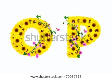 sunflower alphabet O P isolated on white background - stock photo