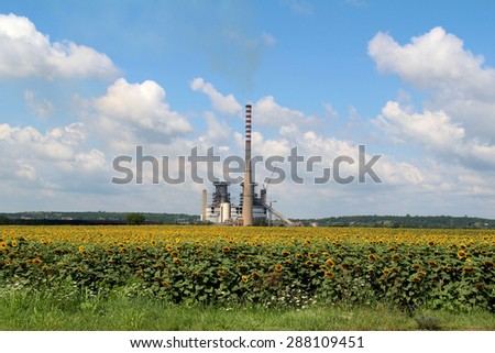 Sunflower and factory