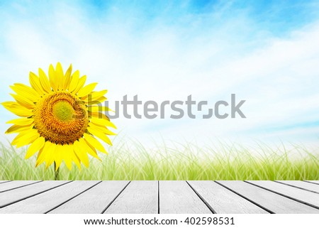 Sunflower background. Blurred on vacation summer soft focus clouds blue sky. Flowers yellow and grass during the daytime with bright sun light. Focus to white wood table top in the foreground. - stock photo