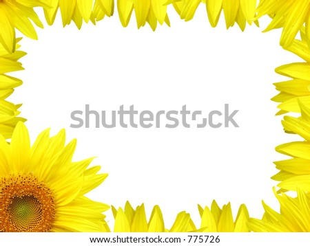 Michele Bagdon S Portfolio On Shutterstock