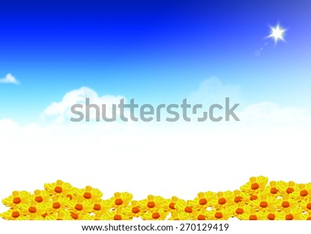 sunflower farm blue sky with clouds and sunlight. Happy, farming, sunbeam, spring, botany, heaven, vibrant, healthy, sunny, bright, organic idea design background template - stock photo