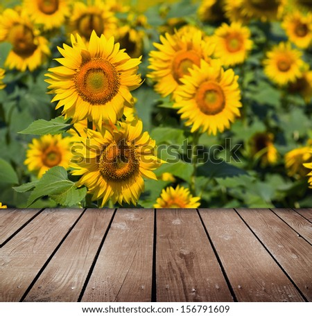 Sunflower field and empty wooden deck table. Ready for product montage display.  - stock photo