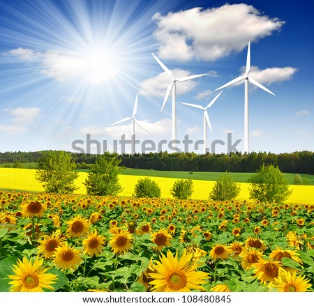sunflower field with wind turbines - stock photo