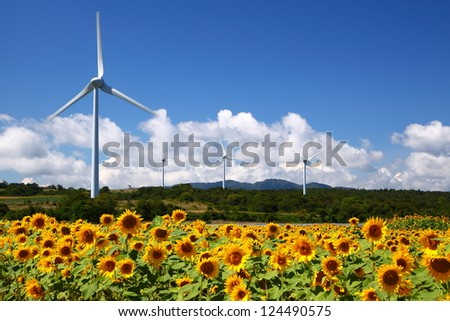 Sunflower field with windmill in Fukushima, Japan - stock photo