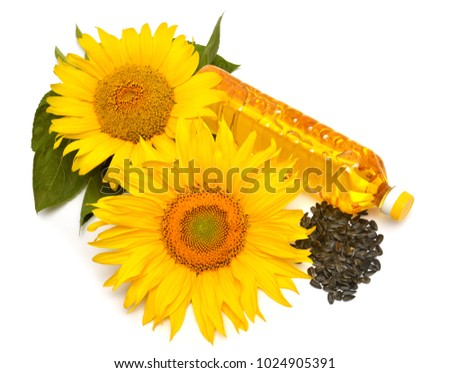 Sunflower oil, sunflower and seeds isolated on white background. Flat lay, top view