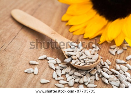 Sunflower seed with a wooden spoon. - stock photo