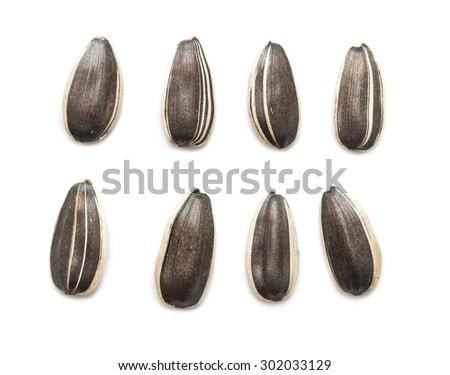 sunflower seeds - stock photo