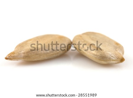 Sunflower seeds detail isolated on white