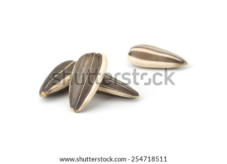 Sunflower seeds isolated on white background close-up - stock photo