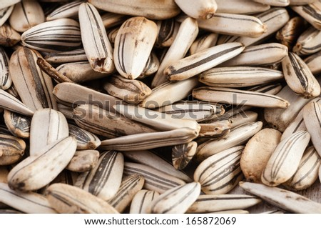 Sunflower seeds laying on rustic table close up