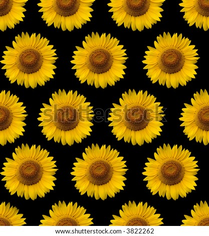 Vintage Sunflower Wallpaper Iphone
