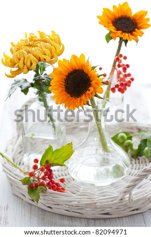 Sunflowers and chrysanthemum in vase  on white background - stock photo