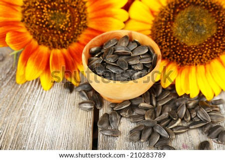 Sunflowers and seeds in bowl on wooden background - stock photo