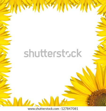 sunflowers border design - stock photo