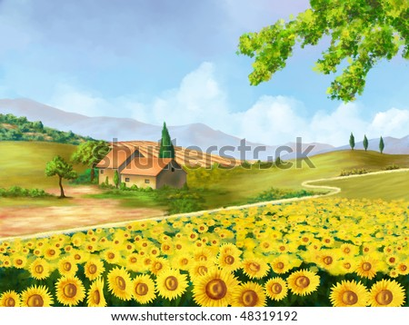 Sunflowers field in Tuscany, Italy. Original digital illustration. - stock photo