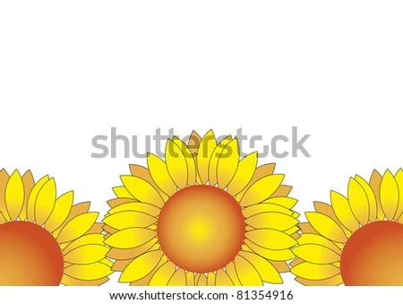 Sunflowers illustration isolated on white - stock photo