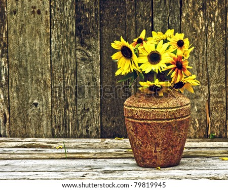Sunflowers in the partial shade on a rustic, grunge background with copy space. - stock photo