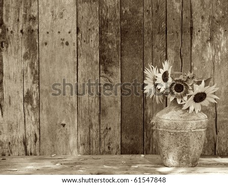 Pottery Barn Stock Photos Royalty Free Images Amp Vectors