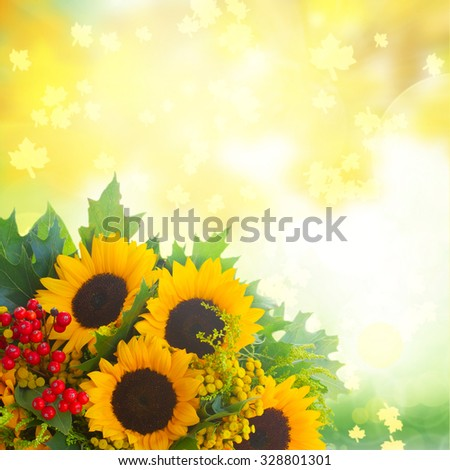 Sunflowers with green leaves and red berries  over fall garden background - stock photo
