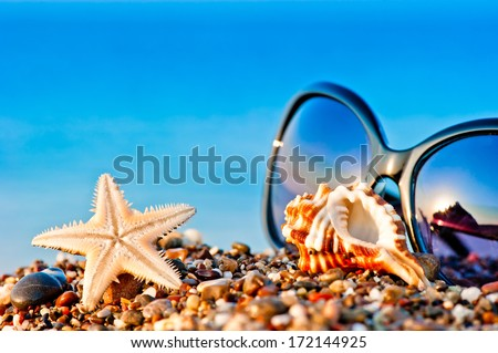 sunglasses and marine life on the beach - stock photo