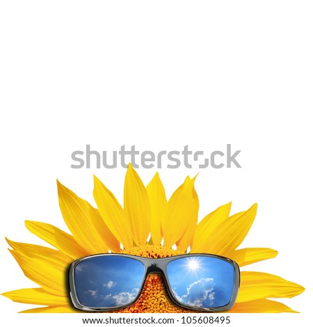Sunglasses and sunflower isolated on a white - stock photo