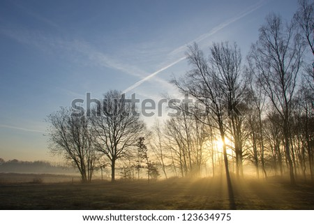 Sunlight bursting through the trees on a foggy morning in early spring - stock photo