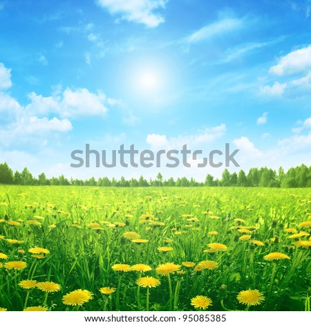 Sunlight in blue sky spring field. - stock photo