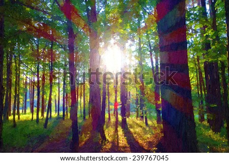 Sunlight in the forest. - stock photo
