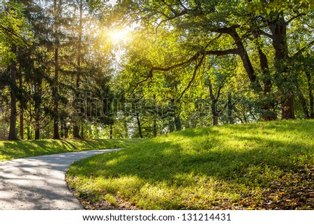 Sunlight in the green forest early morning. Dendro park Uman, Ukraine, Europe. Beauty world - stock photo