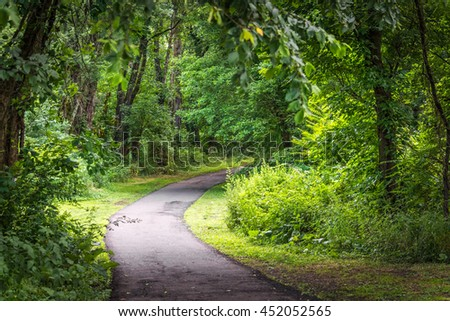 Sunlight on this nature trail through the woods along the Raritan Greenway in Bridgewater New Jersey. - stock photo
