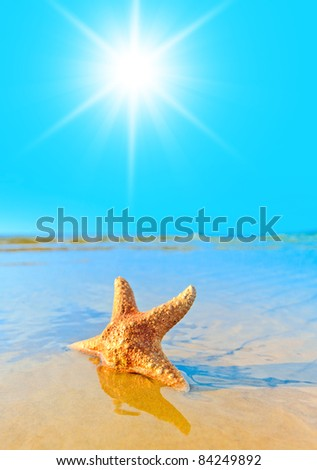 Sunlight Sea Landscape from a Dream - stock photo