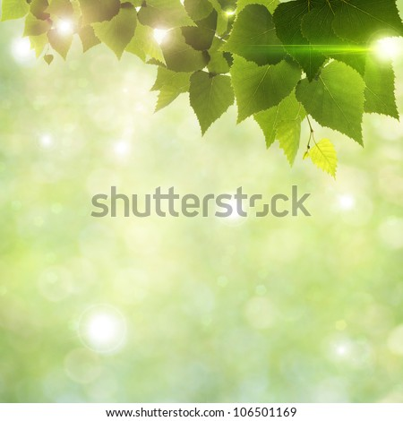 Sunlight through foliage, abstract natural backgrounds - stock photo