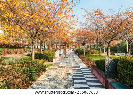 Sunlit park with yellow leaves and blue sky - stock photo