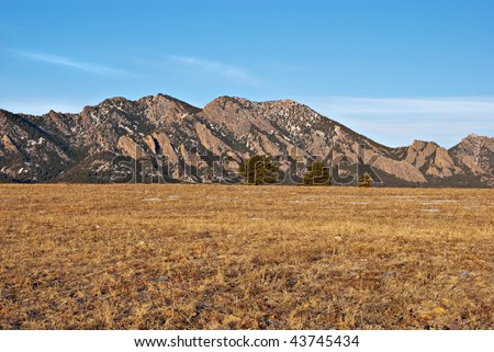 Sunlit pines on a grassy horizon before distant Flatirons Mountains in Colorado near Boulder.