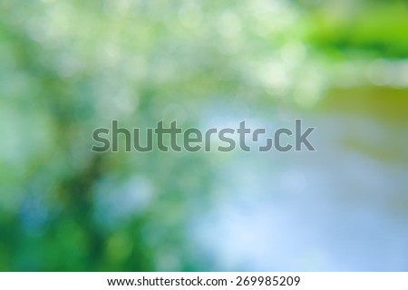 Sunny abstract background green nature, soft focus - stock photo