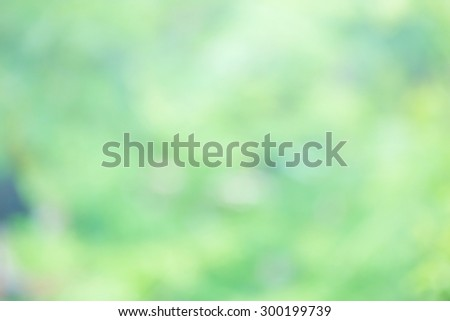 Sunny abstract green nature background, Blurred  background . - stock photo