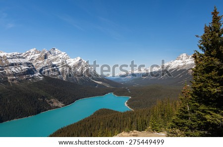Sunny afternoon at Peyto Lake and Caldron Peak in the Mistaya River Valley in Lake. Banff National Park, Alberta, Canada - stock photo