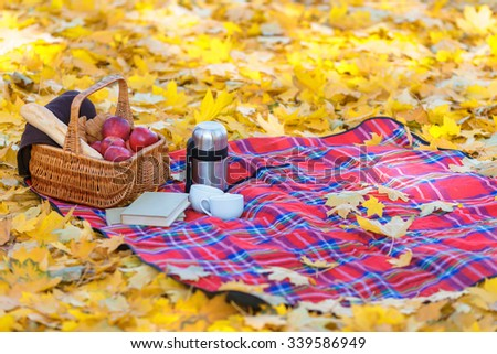 Sunny autumn day. Close up of blanket lying on the ground in park with basket of juicy apples on it - stock photo